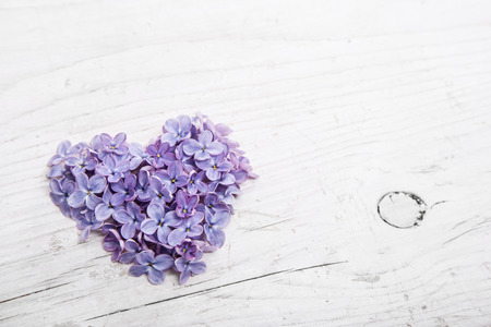 purple heart: Heart of violet or purple lilac blossom on white shabby wooden background.
