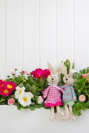 décoration de Pâques avec un couple de lapin une primevère rose sur fond blanc en bois.