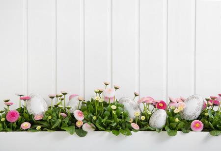 Roze en witte margriet bloemen met paaseieren voor decoratie op houten shabby chic achtergrond.