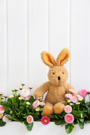 Plush bunny sitting in pink daisy flowers for easter decoration items.