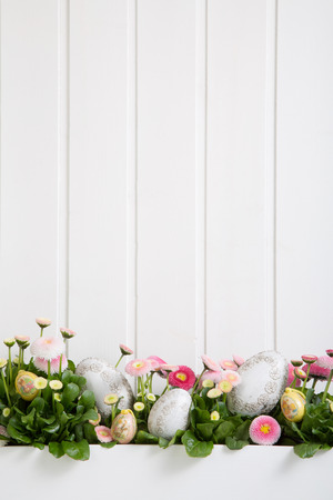 Pink and white daisy flowers with easter eggs for decoration on wooden shabby chic background.