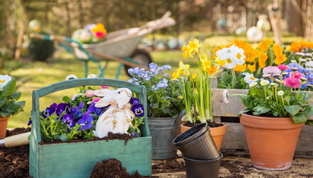 Easter handmade decoration with spring flowers and bunny at home. Stock Photo