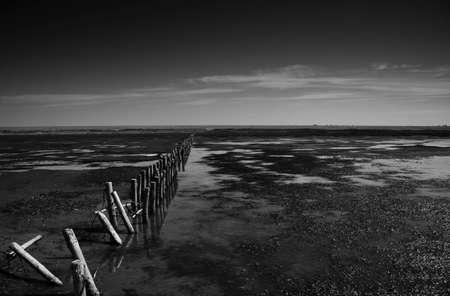 wadden: Landscape at the wadden sea, Denmark at low tide
