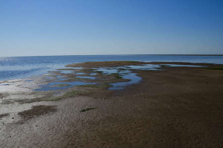 wadden: the tide is coming in at the wadden sea, Denmark Stock Photo