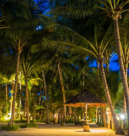 mabul: A hut under palm trees - Mabul Island, Sabah