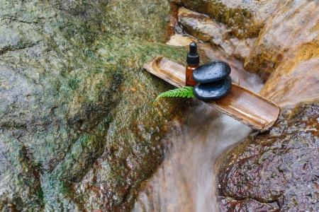 Essence oil and zen stone in spa concept Stock Photo - 23171027