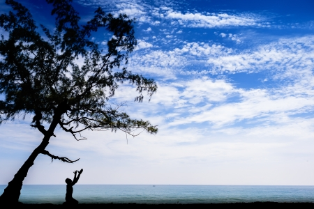 Silhouette of a person praying under a tree by the beach