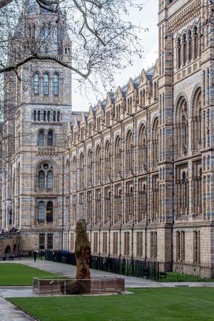 El Lado Del Museo De Historia Natural De Londres Impresionante