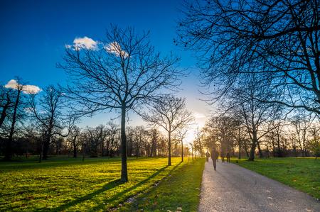 personnes qui marchent: Silhouette de gens qui marchent vers le coucher du soleil dans un parc.