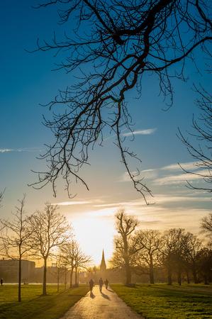 gente caminando: Silueta de personas caminando hacia la puesta de sol en un parque.