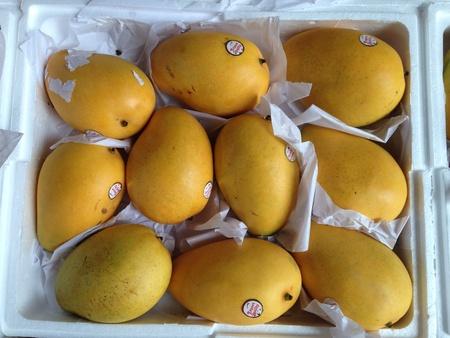 closeup: Ripe yellow mangoes closeup