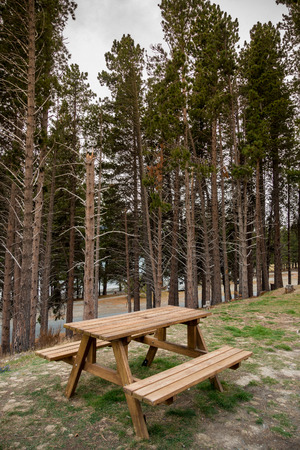 Picnic Table In The Forestpark In New Zealand Stock Photo Picture - Spruce picnic table