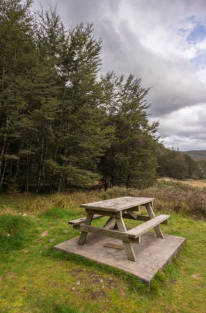 rule of thirds: Picnic table in the forestpark in New Zealand