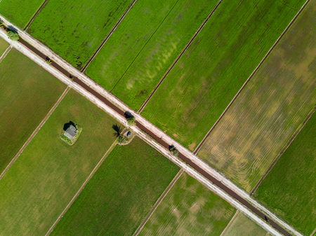 Aerial View - Green Paddy Fields Stock Photo
