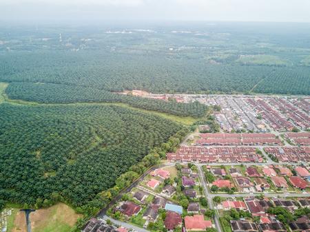 空中写真 - パーム油のプランテーションや住宅の屋上。小さな町の Jasin、マラッカ、マレーシアのクアラルンプールから 100 km