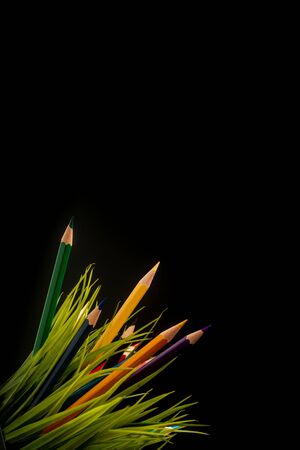 Nature Growth - Still Life Conceptual - Colored Pencils coming out of grass. Shallow depth of field, selective focusing, black background