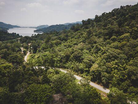Aerial View - Road cutting through a rainforest