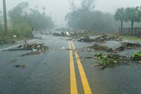 para baixo: Debri bloqueando estrada durante um tufão Imagens