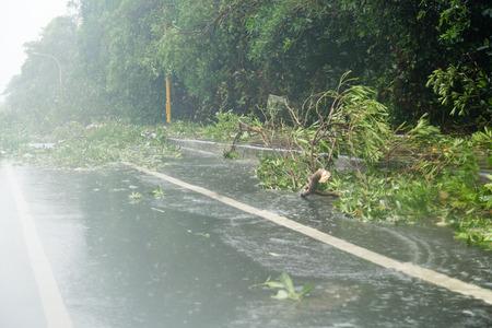 blocking: Debri blocking road during a typhoon