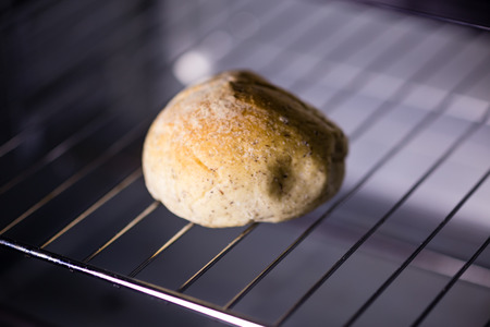 One bun in oven, shallow DOF