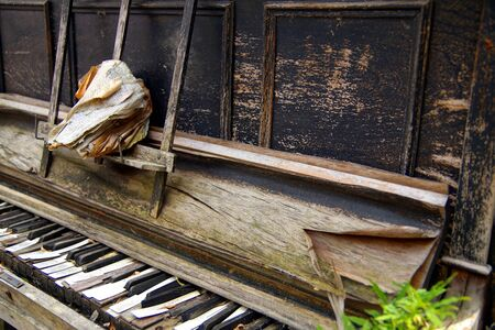 Black and white keys of a broken wooden keyboard piano. old open book on the piano. Old broken and Worn piano keys. made of wood. old musical instruments
