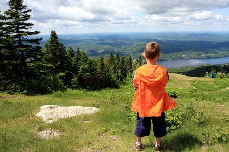 contemplating nature photo
