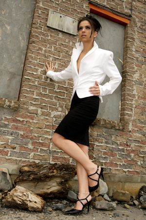 classy businesswomen Stock Photo - 3329970