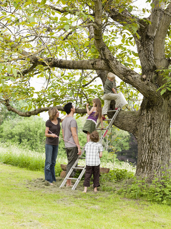 Parents With Kids Tree-Climbing