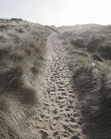 Footprints in Sand Path