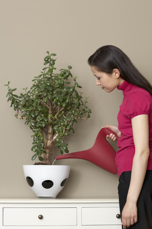 Businesswoman watering plant Imagens