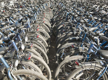 conforms: Rows and rows of bicycles