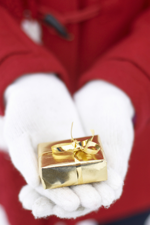Hands holding a small present