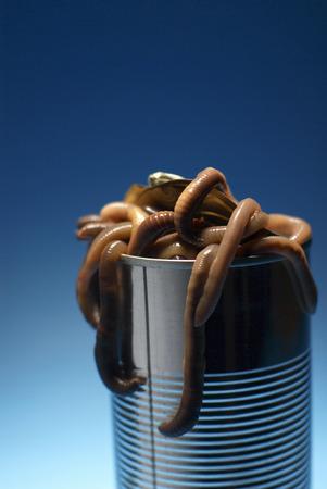 Can of worms Banco de Imagens