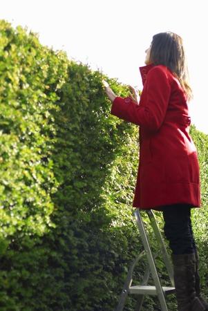 Lady on steps in a maze