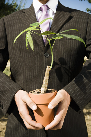 Pair of hands holding potted plant.