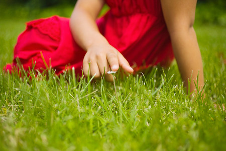 sweet grasses: A girl touching a daisy