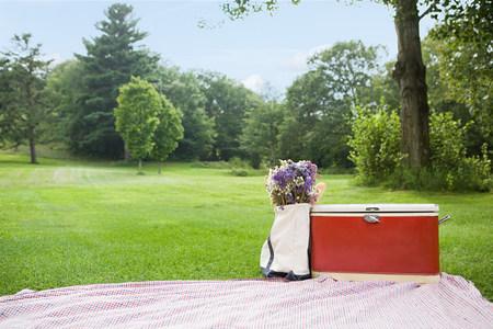 bedspread: Picnic in the park