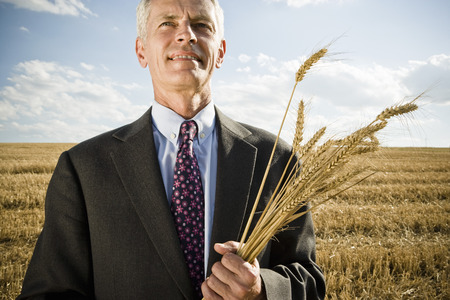 Businessman in a wheat field holding wheat.