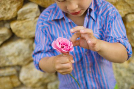 A boy picking petals off a flower