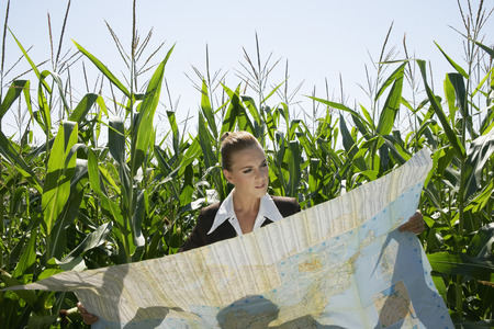 Businesswomen looking at map in cornfield. Фото со стока