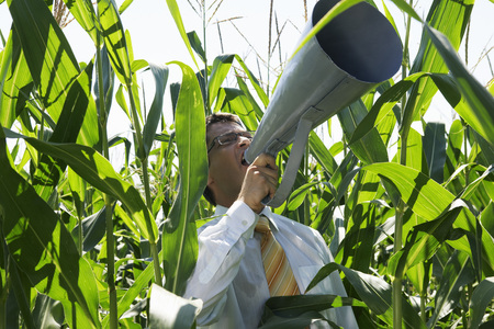 Businessman with megaphone in cornfield.