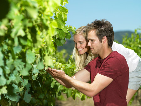 Couple looking at vines