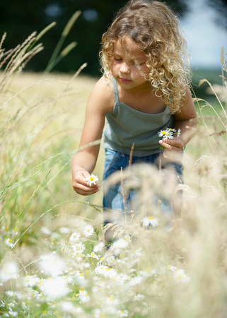 Young girl picking flowers in field