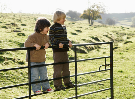Two boys swinging on gate in countryside Stock Photo