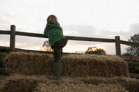 Boy climbing on hay bales Stok Fotoğraf