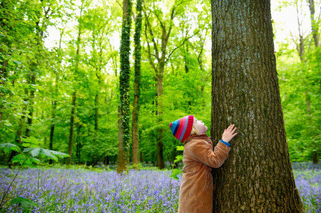 Girl holding a tree in her arms