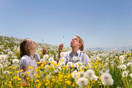 father, girl in meadow blowing dandelion