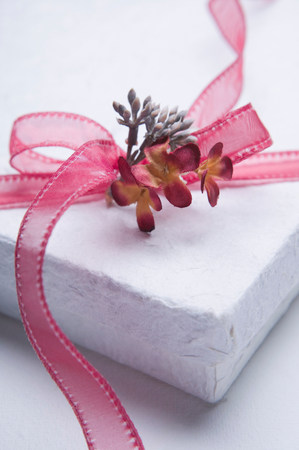 White wrapped present box