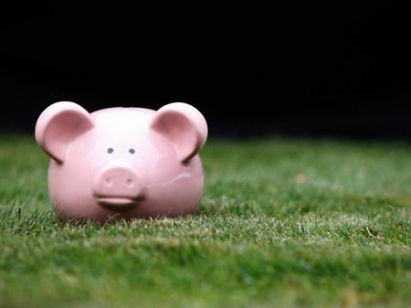 Piggy bank on grass Stock Photo