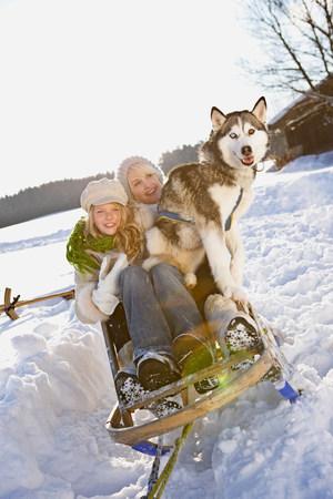 Balade hivernale avec traîneau à chiens Banque d'images
